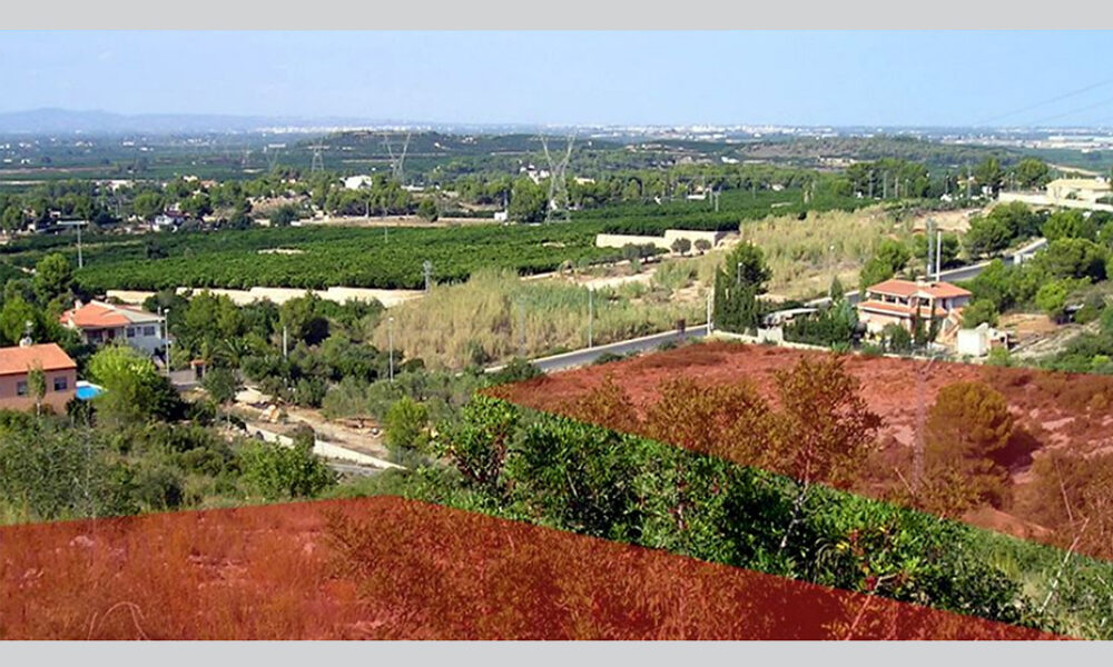 Building plots for sale in Alberic, Valencia – Ref: 009267
